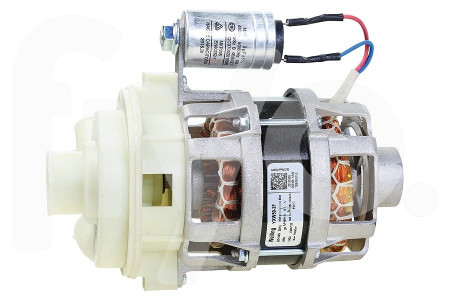 Pompe de Circulation (Pompe de Rinçage) avec Condensateur et Boîtier de Pompe Welling YXW50-2F Lave vaisselle 405253