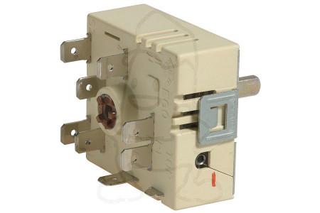 Interrupteur (1 zone -conversion-) four 481231038481