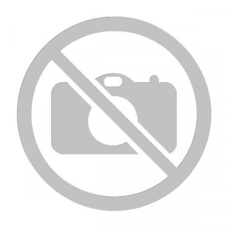 Portillon transparent pour réfrigérateur/congélateur C00278737