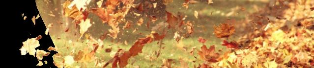 Pièces détachées pour souffleur de feuilles