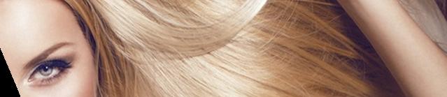 Sèche cheveux pièces détachées et accessoires